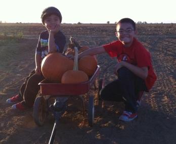 RJ & Gio - pumpkin patch