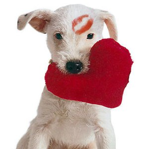 Valentines-Day-dog with lips on head and holding heart pillow